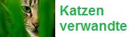 Katzenverwandte Wiki