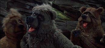 Bears Muppet Wiki