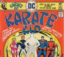 Karate Kid/Covers