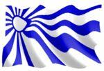 Flaga solardii