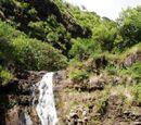 Vale de Waimea