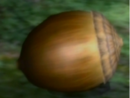 -21Armored Nut.png