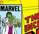 Incredible Hulk Vol 1 293