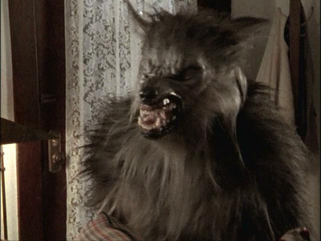 Werewolf dating a human