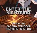Enter the Nightbird