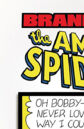 Amazing Spider-Man Vol 1 560.jpg
