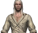 The Witcher armor