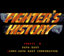 Fighter's History (series)