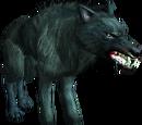 Beann'shie (wolf)