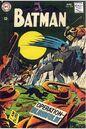 Batman 204.jpg