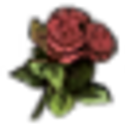 Flowers Red Rose.png