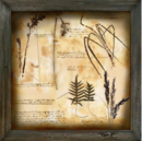 Decorative Painting botanical 2.png