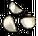 Talismans Garlic.png