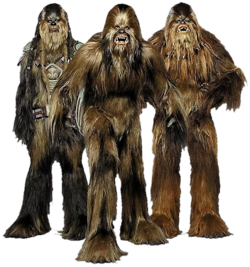 Wookiees-Transparent