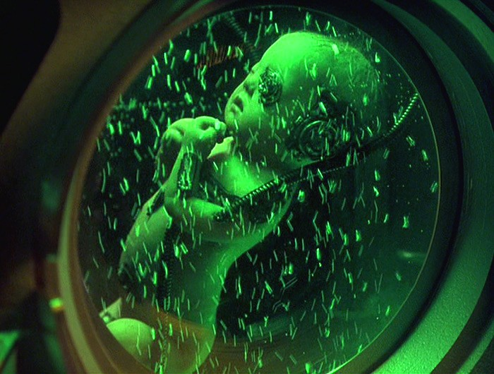 Baby Borg - Star Trek Voyager Fan Art (30941258) - Fanpop  |Borg Baby