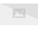 The Official Marvel Index to the X-Men Vol 1 4 Full Cover.jpg