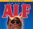ALF Seasons