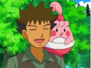 EP544 Brock con Happiny.png