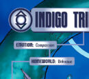 Indigo Tribe (New Earth)/Gallery