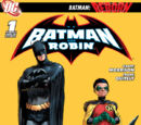 Batman and Robin/Covers