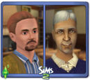Sims who love spice brown