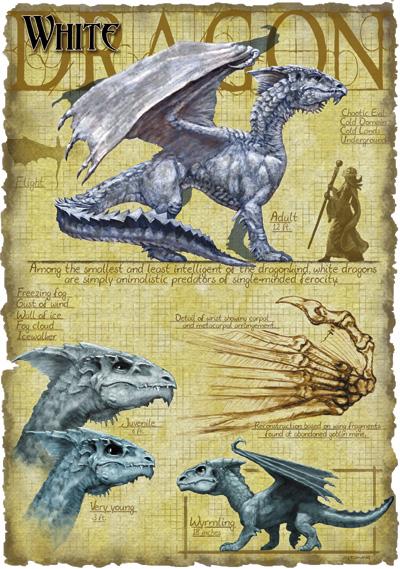 Dnd White Dragon: The Forgotten Realms Wiki