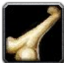 Inv misc bone 01.png