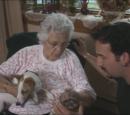 Mrs. Peterson's Dog Gets Fucked Up (Episode)