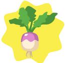 HG-Turnip.png