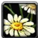 Inv misc flower 02.png