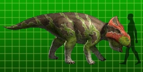 pachyrhinosaurus dinosaur king  full-sized Udanoceratops