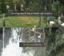 Treasure Beyond the Waterfall