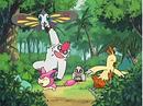 EP409 Pokémon de May jugando.png