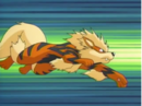 EP430 Arcanine.png