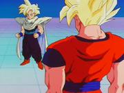 GokuAndGohanAfterTimeChamber