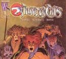 Thundercats: Reclaiming Thundera 1
