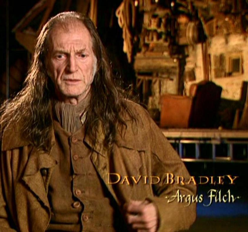 david bradley harry potter - photo #12