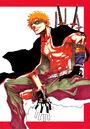 Ichigo poster akamaru jump.jpg