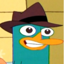 Perry smiling avatar.png