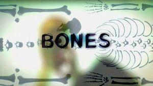 0---tvserials---bones wikia com Pilot is the first episode of the first