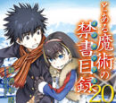Toaru Majutsu no Index Light Novel Volume 20