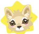 Petling Coyote