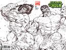 Skaar Son of Hulk Vol 1 12 Sketch Variant.jpg