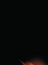 Ms. Marvel Vol 2 35 Textless.jpg
