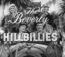 Beverly Hillbillies Wiki