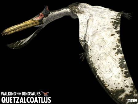 Quetzalcoatlus_z1.jpg