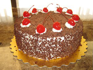 Cake Half Life Wiki