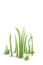Grass4-icon.png