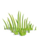 Grass100-icon.png