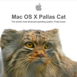 Mac OS X Pallas Cat